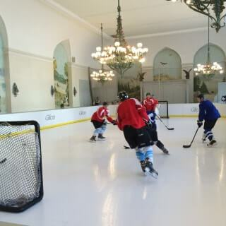 Glice plastic ice rink - Brunen