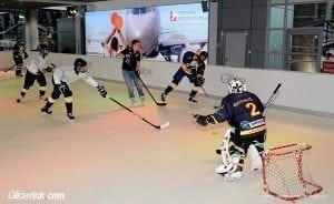 How Do You Choose the Best Synthetic Ice?